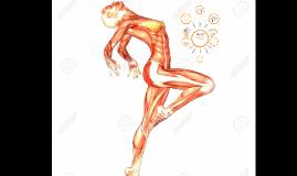 Abordaje fisioterapeutico en Sindrome de Disfuncion Miofascial de la Cadena Cruzada Posterior