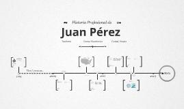 Timeline Prezumé de Rocio Medina de José Luis Martínez Gro.
