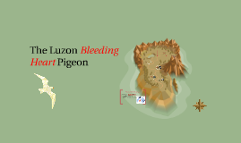 The Luzon Bleeding