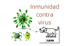 Copy of Inmunología contra virus