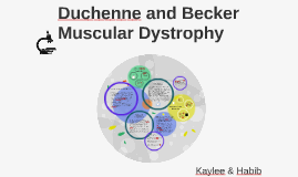 Duchenne and Becker Muscular Dystrophy
