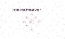 Polar Bear Plunge 2017