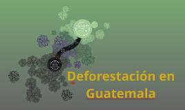 Copy of Copia de DDefore