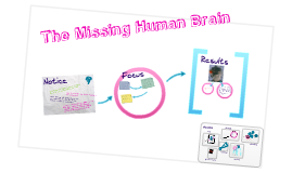 The Missing Human Brain