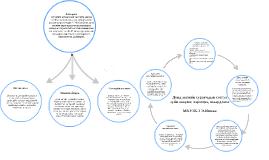 Copy of Дунд ангийн сурагчдын сэтгэл зүйн онцлог, хэрэгцээ, шаардлаг