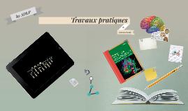 Travaux pratiques de neuroanatomie