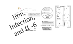 Iron, Infection, and IL-6