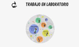 TP Laboratorio