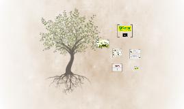 Copy of Presentacion Productos Fercon S.A.