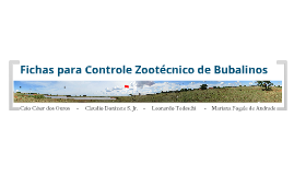 bubalinocultura