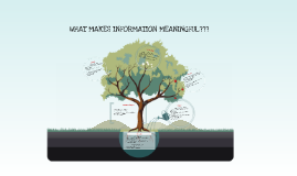 WHAT MAKES INFORMATION MEANINGFUL???