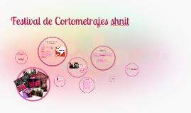 Festival de Cortometrajes shnit