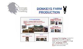 DONKEYS FARM PRODUCTION
