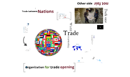 WTO International organizations