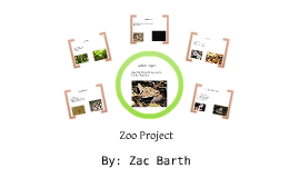 Barth Zoo Project