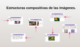 Estructuras compositivas de las imágenes.