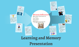 Learning and Memory Presentation
