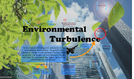 Environmental Turbulence and Innovation