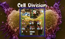 AP Bio- Cell Cycle 1:  Mitosis
