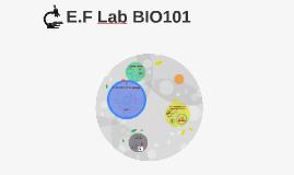 E.F Lab BIO101