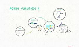 Copy of Copy of ÁCIDOS NUCLEICOS II