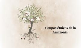 Grupos étnicos de la Amazonia: