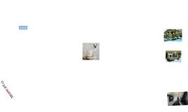 Un gat siamès
