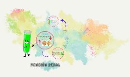 Copy of Función Renal