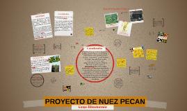 Copy of Copy of PROYECTO DE NUEZ PECAN