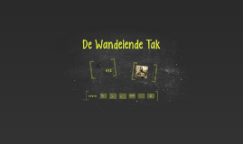 De Wandelende Tak - communicatie 2