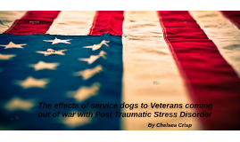 The effects of service dogs to Veterans coming out of war wi