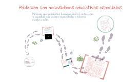 Población con necesidades educativas especiales