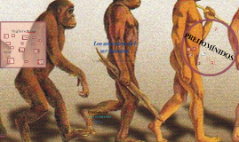 Los ancestros del Hombre