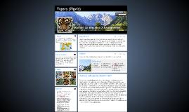 Tigers (Tigris)