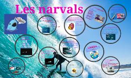 Les Narvals