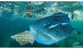 The story of plastic is the story of all of us