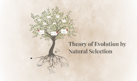 Copy of Theory of Evolution by Natural Selection