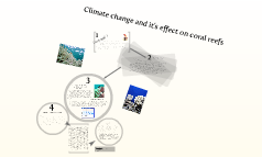 Climate change and it's effect on coral reefs