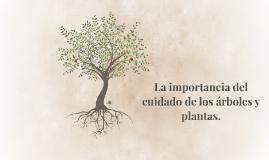 La importancia del cuidado de los arboles y plantas.