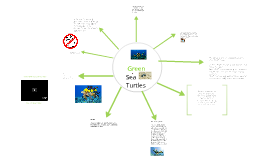 the green sea turtle (adaptations)