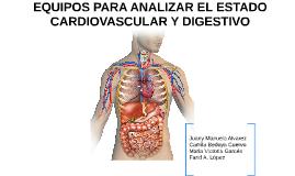 EQUIPOS PARA ANALIZAR EL ESTADO CARDIOVASCULAR Y DIGESTIVO