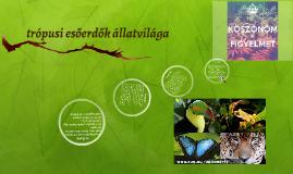trópusi esőerdők állatvilága