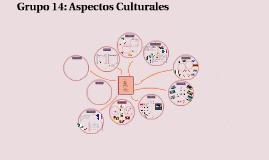 Grupo 14: Aspectos Culturales