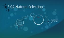 5.02 Natural Selection