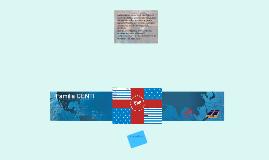 Bandera CENTI