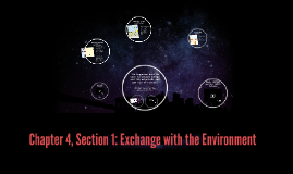 Copy of Chapter 4, Section 1: Exchange with the Environment