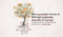 The Larvicidal Activity of Bali-bali (euphorbia tirucalli) o