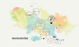 Copy of Copy of Copy of Valvulopatías