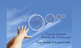 Consell Assessor d'Àrids de Catalunya 2013