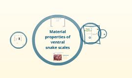 Snake prezitation 1.0
